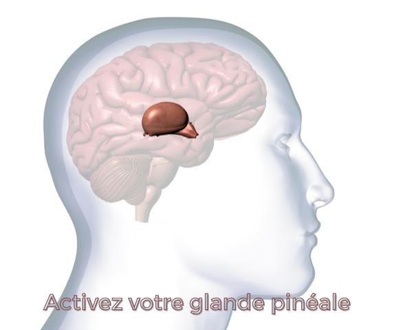 L'extraordinaire respiration pour activer la glande pinéale